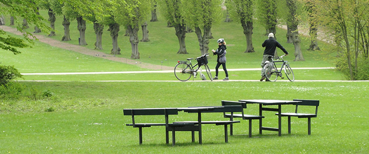 Cycle in the park