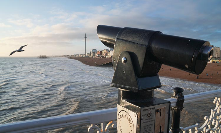 Looking over Brighton Beach with a telescope to the right and a seagull to the left