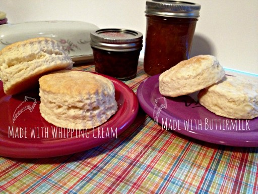 Two Ingredient Biscuits 4