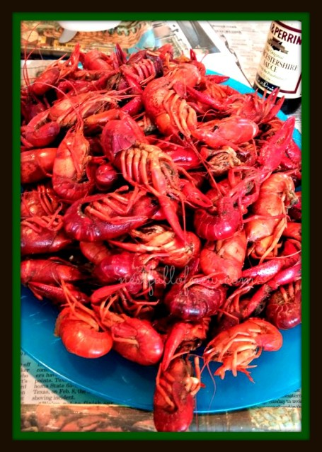 Crawfish Boil 8