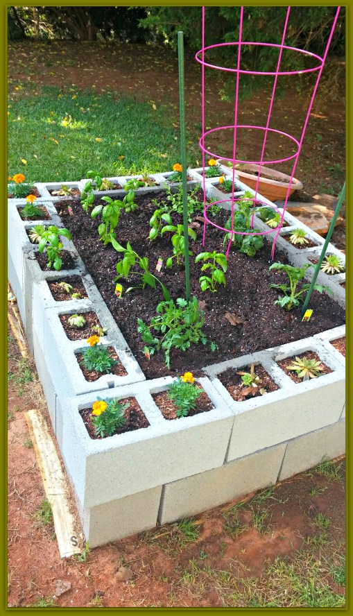 Raised Bed Garden - Nest Full of New