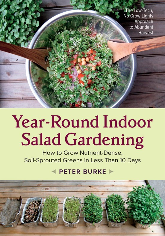 Year Round Indoor Salad Gardening