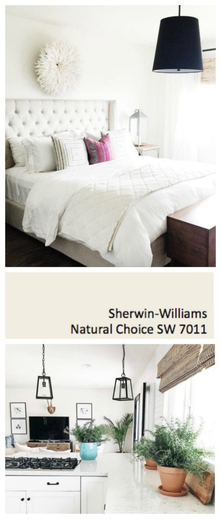 Sherwin Williams Natural Choice- Bright White Paint for all over Home
