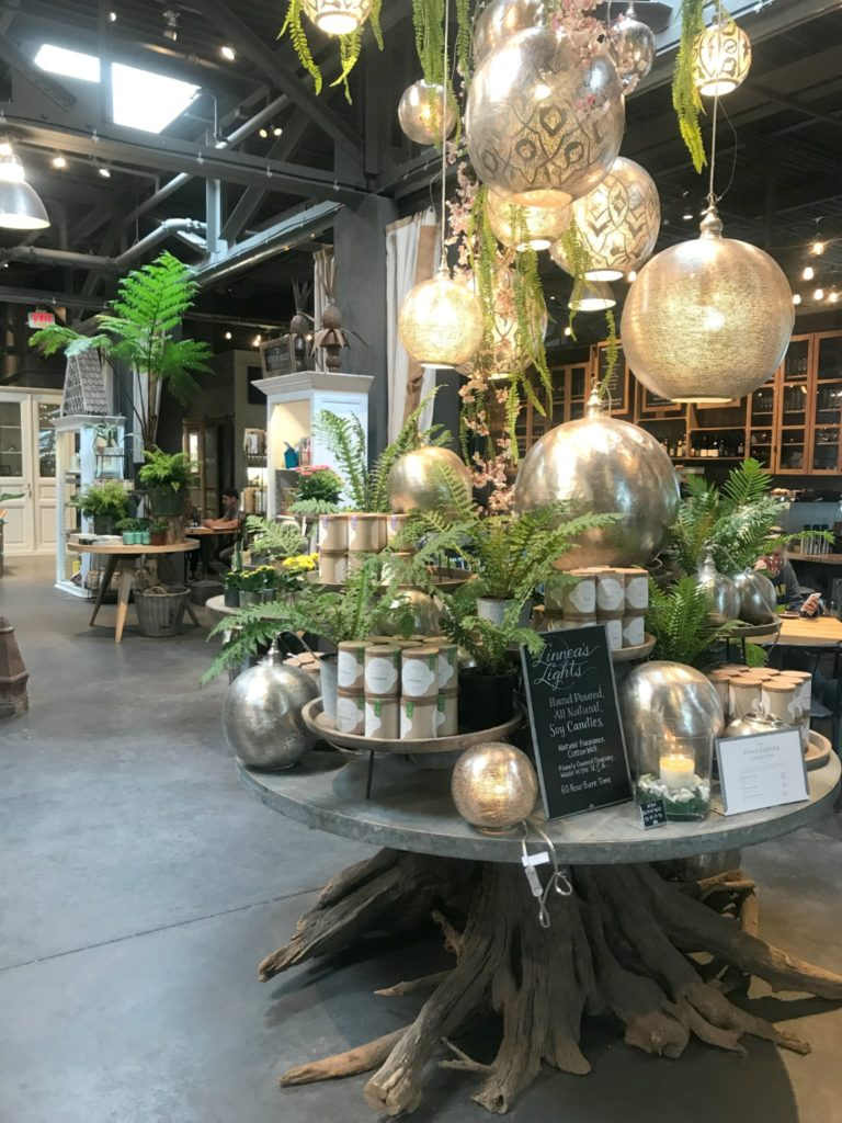The Best Place to go for Home Decor, House Plants and Major Inspiration