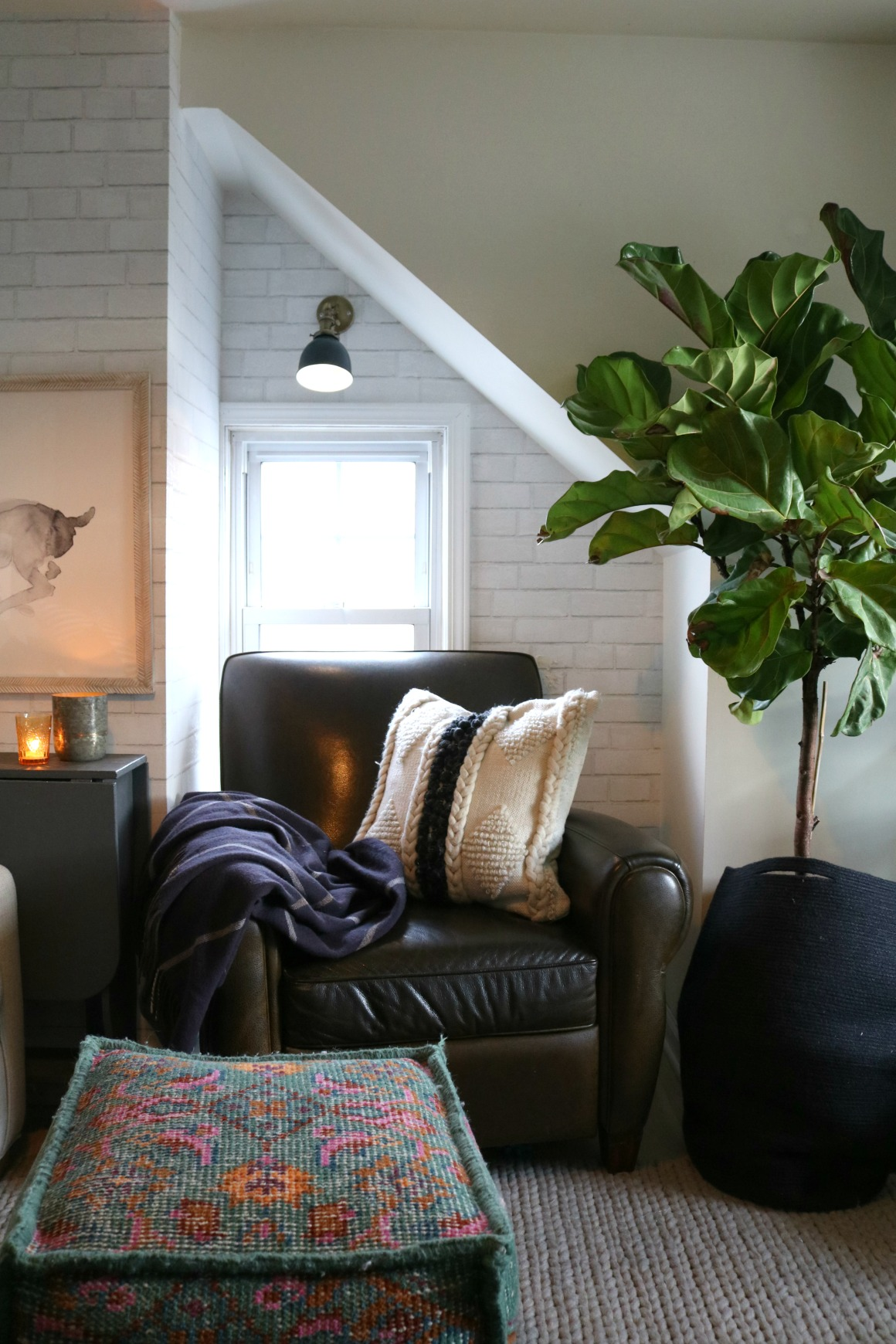 How to Keep Fiddle Leaf Figs Alive