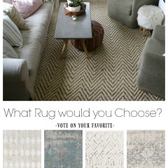 Rug Options and Where I go for Rugs