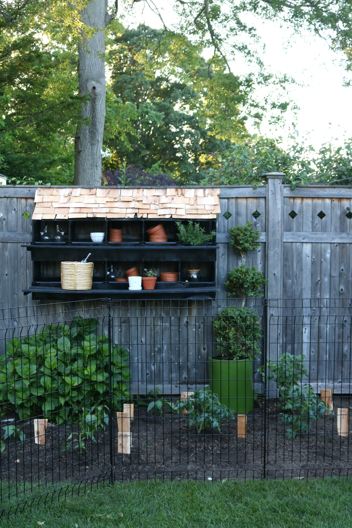 Our new Garden and Nesting Box