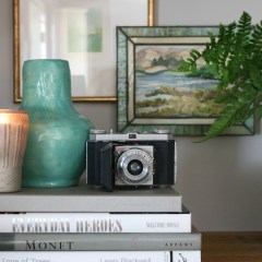 House built by Thrifted Decor and Five Tips for Thrifting!