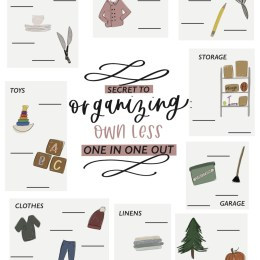 Organizing Challenge and Printable- Organizing By Numbers