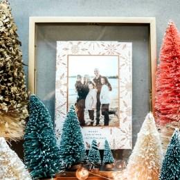 Our Christmas Cards- Family Photos