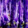 Deep Purple by Nestor Toro