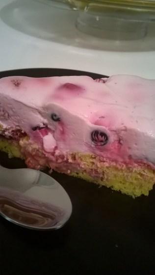 torta-od-sira-i-sumskog-voca-5
