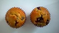 muffini-sa-kupinama-2