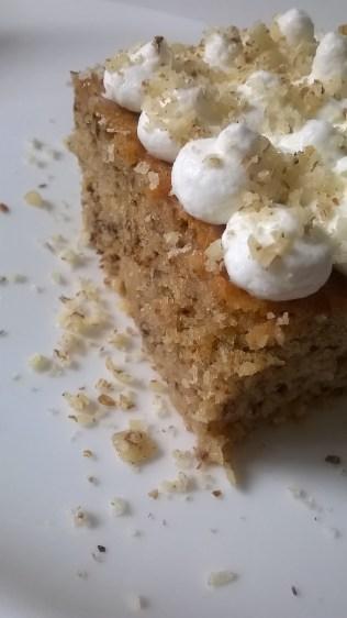 vlažni kolač od oraha (1)