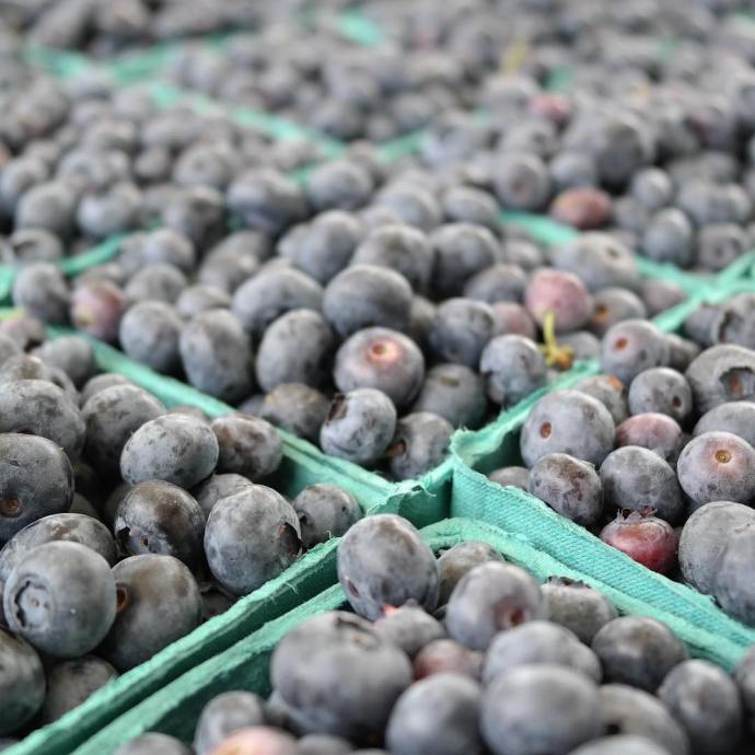Blueberries at the Geneva IL French Market farmersmarket summertime genevafrenchmarkethellip