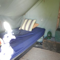 Inside one of 3 vintage canvas wall tents