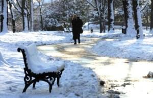 Sneg-u-parku