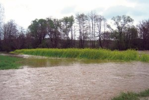 poplave-njive-oranice-1398289039-485101