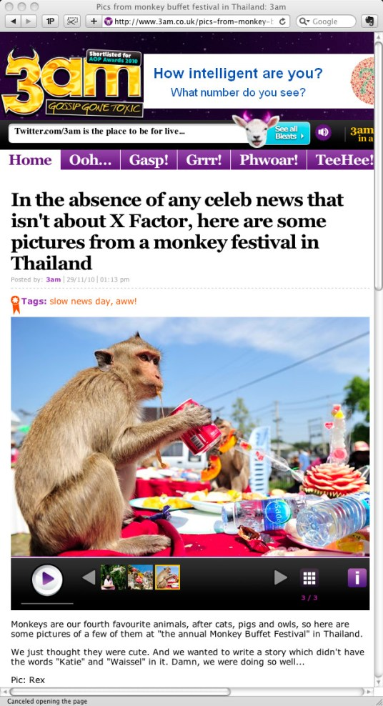 **TEARSHEET FROM THE 3AM WEBSITE** A monkey drinks a can of soda during the annual 'monkey buffet festival' at the Phra Prang Sam Yod (The Three Crests Phra Prang) in Lopburi province. The festival is held annually on the last Sunday of November to promote tourism.