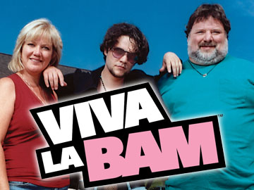 Image result for viva la bam