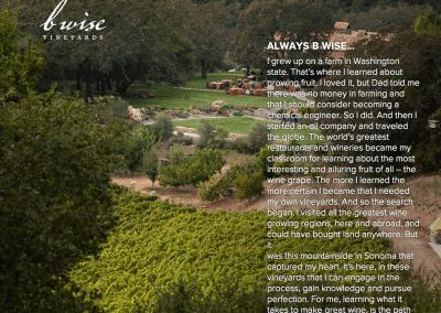 B Wise Vineyards