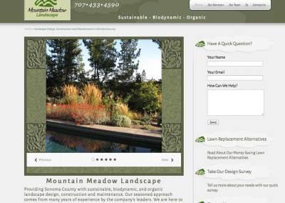 Mountain Meadow Landscape
