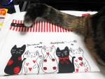 【レビュー】100均 ダイソー 【A5 ケース 猫柄 ファスナー付き布ケース】 細かいものを突っ込んで整理するのに最適!