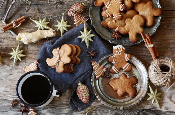 Holiday Dairy free gingerbread cookies