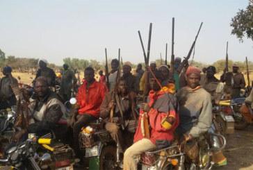 Fada-Ngourma : 10 koglwéogo arrêtés par la gendarmerie