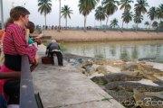 Côte d'Ivoire: «Trompé» par sa copine, Il se jette dans un lac et se fait dévorer par des crocodiles à Yamoussoukro