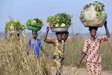 Enquête multisectorielle continue de l'INSD : la pauvreté a reculé de 7% au Burkina Faso