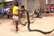 L'Afrique et ses mystères ne finiront jamais de nous étonner (vidéo)