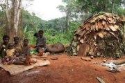 Soutenance de thèse chez les pygmées à Bipindi