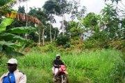 Côte d'Ivoire - Mont Péko : Les burkinabé sommés de quitter les lieux