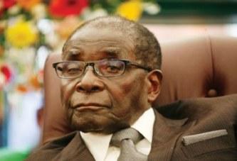 Zimbabwe: Deux hommes arrêtés pour avoir abattu un arbre du Président Mugabe