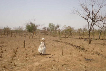 Sept pays africains dont la Côte d'Ivoire bénéficient de fonds pour faire face au changement climatique