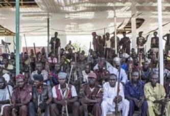 Nigeria: Une association de chasseurs prête à aller capturer Abubakar Shekau membre de Boko Haram, mais….