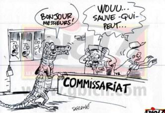 Faits divers :  Un crocodile dans un commissariat