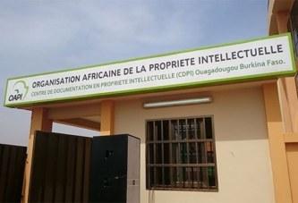 Propriété intellectuelle: L'Organisation Africaine de la Propriété intellectuelle (OAPI) dote le Burkina Faso d'un Centre de Documentation