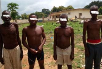 Côte d'Ivoire: Riviera/ Une confrérie de sorciers démasqués par une plante