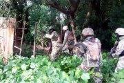 Nigeria: Boko Haram délogé de Sambisa, un blanc capturé, un fugitif arrêté à Lagos