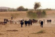 Sahel burkinabè : Attention au syndrome azawadien !