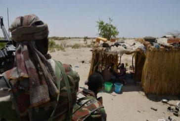 Niger: L' Etat d'urgence prolongé dans les régions de l' Ouest, proche du Mali