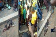 Bénin: Un enfant ramasse une pièce de 10 francs dans la rue et se transforme en chien