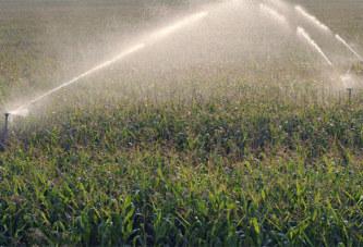 Quand la France autorise l'exportation d'un pesticide interdit sur son sol