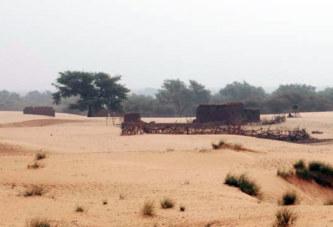 Arbinda (Sahel): Au moins 19 morts dans une attaque dimanche soir