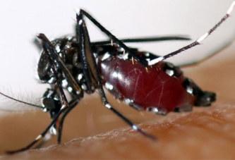 Burkina: 4 017 cas suspects de dengue, 11 décès