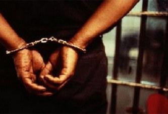Deux jeunes condamnés pour avoir déposé une tête de sanglier devant une mosquée