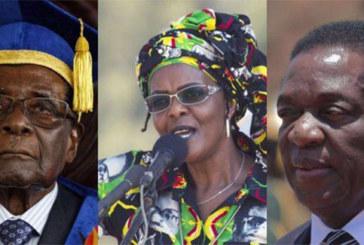 Zimbabwe : le vieux lion Mugabe, la panthère Grace et le crocodile Mnangagwa