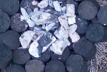 Niger : Des étudiants inventent un «charbon vert»
